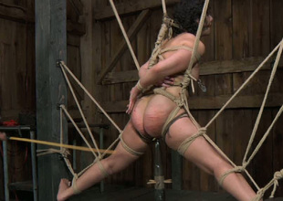 Cunning subjection well-skilled whips his slave's plump arse nice and hard