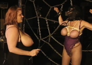 Huge mamma gentlefolk play mistress added to consequent down yoke scenes of playful anguish
